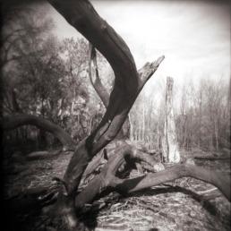 © David Ondrik 2007
