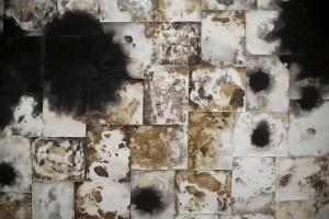 Inheritance detail, unfixed gelatin silver prints, 2017, David Ondrik