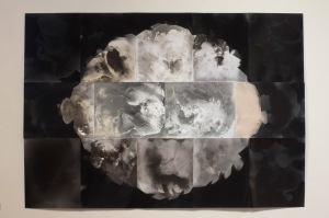 """Genesis,"" unique unfixed gelatin silver prints, 28″ x 40″, 2016, David Ondrik"