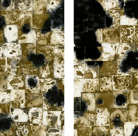 """Reluctance Diptych,"" fixed & unfixed gelatin silver prints, 80"" x 110"", 2018, © David Ondrik 2018"