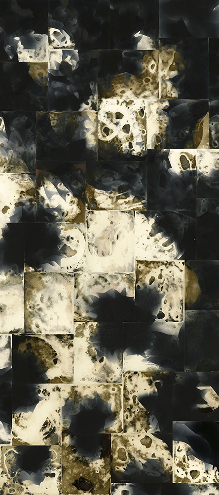 "Gravity, unique unfixed gelatin silver prints, 80"" x 35"", 2018, © David Ondrik"