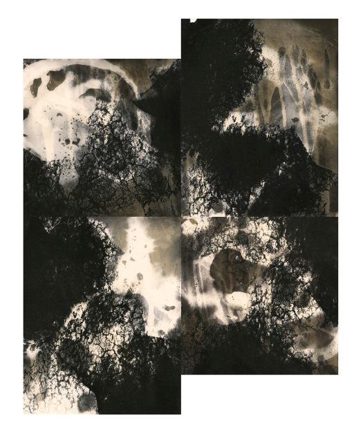 """Drought, unique gelatin silver prints, 18"""" x 16"""", 2020"""