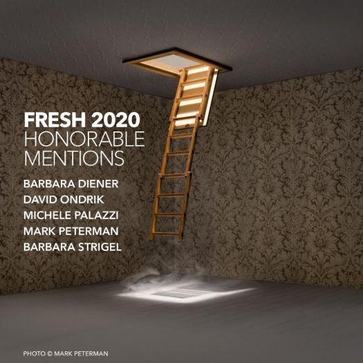 Fresh 2020 Honorable Mentions: Barbara Diener, David Ondrik, Michele Palazzi, Mark Peterman, Barbara Strigel